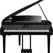 ساز پیانو ۵ تا از اینها دارد